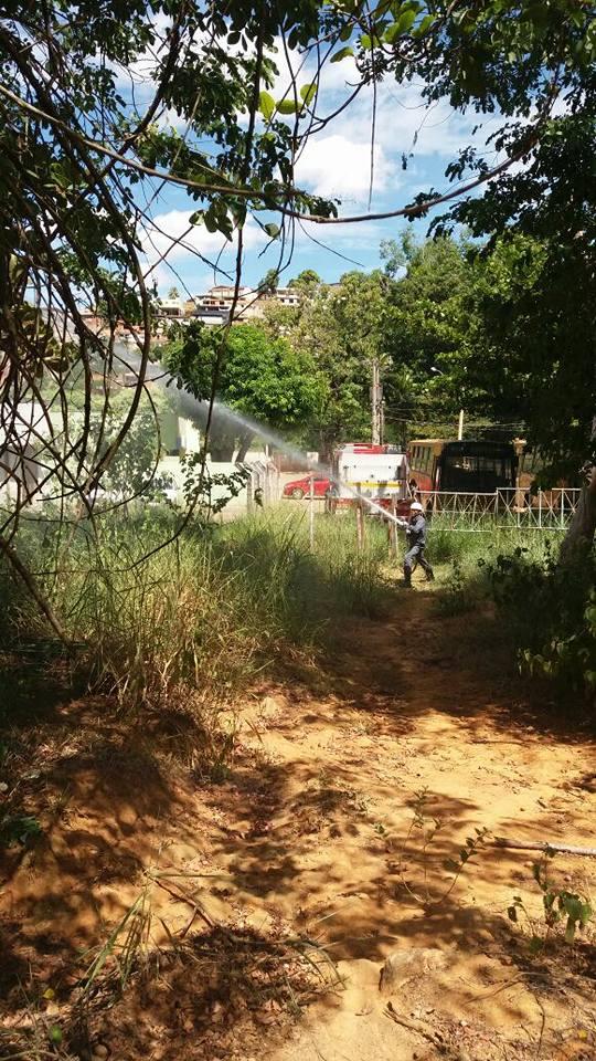 BOMBEIRO MURIAE