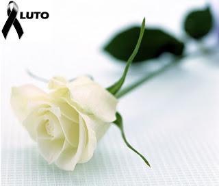 luto-rosa-branca